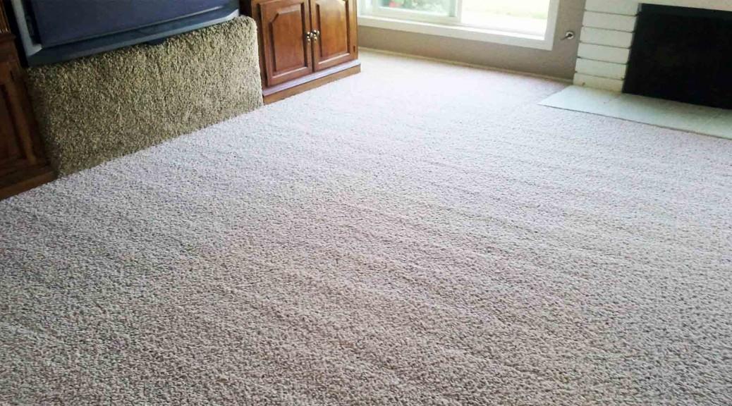 LTM Carpet Cleaning Hills District