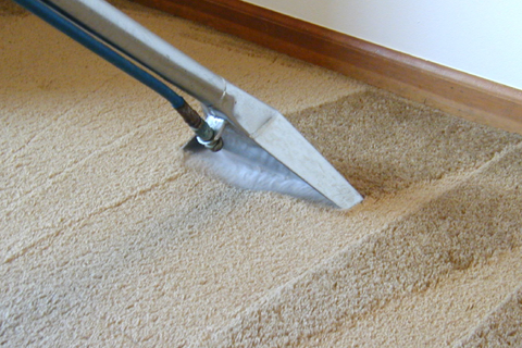 LTM Carpet Cleaning Hills District