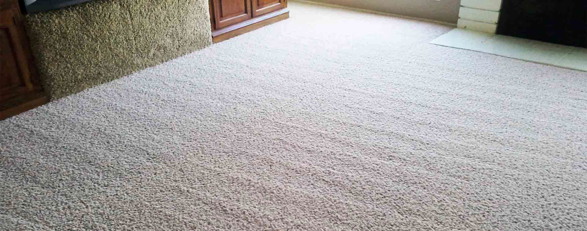Carpet Cleaning Ryde