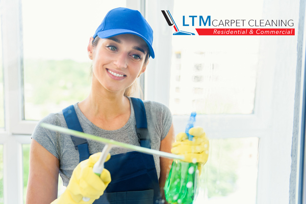 Are professional carpet cleaners worth it